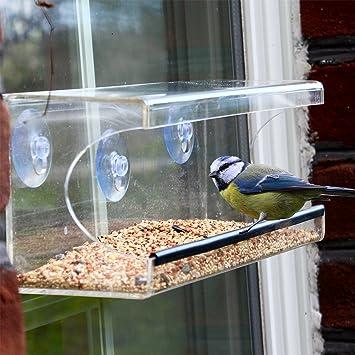 Delightful Large Window Bird Feeder   Clear, See Through Feeder: Brings Wildlife To  Your Window