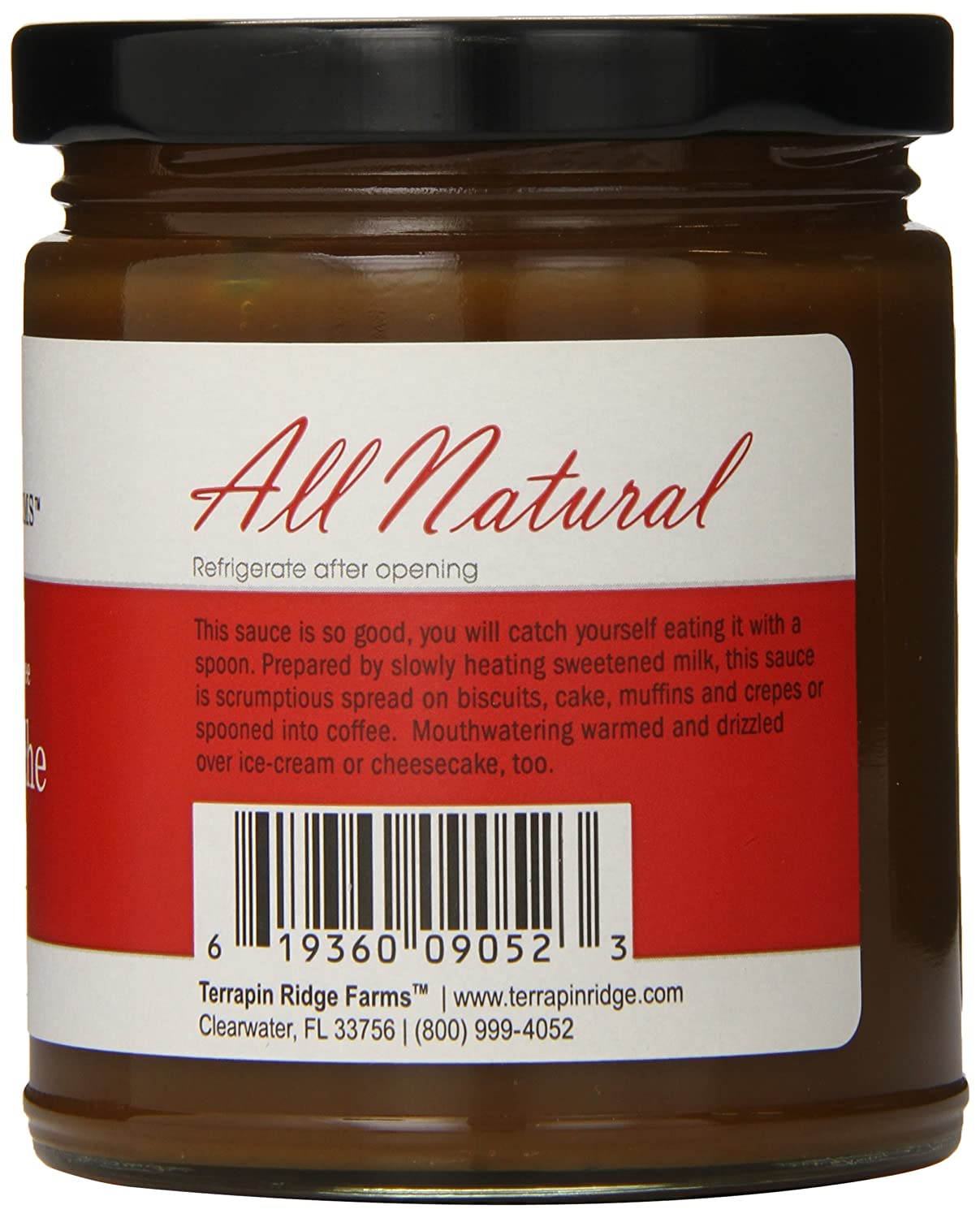 Amazon.com : Terrapin Ridge Farms Dessert Topping, Dulce de Leche, 11 Ounce : Grocery & Gourmet Food