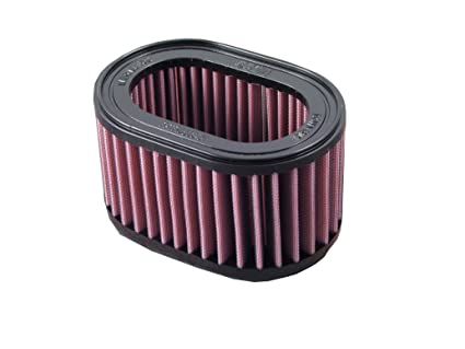 Amazoncom Dna Air Filter For Triumph Speed Triple T509 955 2002