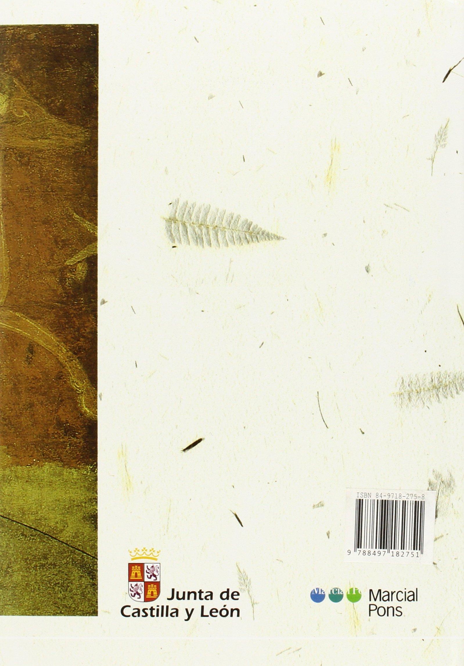 El Condado de Castilla, 711-1038: La Historia Frente a la Leyenda (Spanish Edition): GONZALO MARTINEZ DIEZ: 9788497182751: Amazon.com: Books