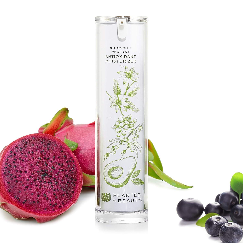 Organic Face Moisturizer & Anti Aging Face Cream - Luxury Natural Moisturizer (Nourish + Protect) - Certified Vegan, Cruelty Free & Organic Antioxidant Moisturizer (1.7 Oz) by Planted in Beauty