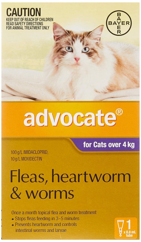 Advocate Singles for Cats Over 4 Kg Pet Meds