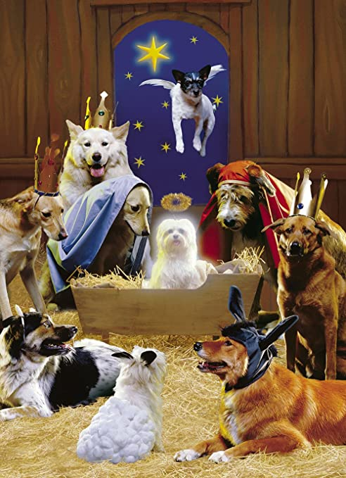 Dog Christmas Cards.Avanti Christmas Cards The 12 Dogs Of Christmas 10 Count