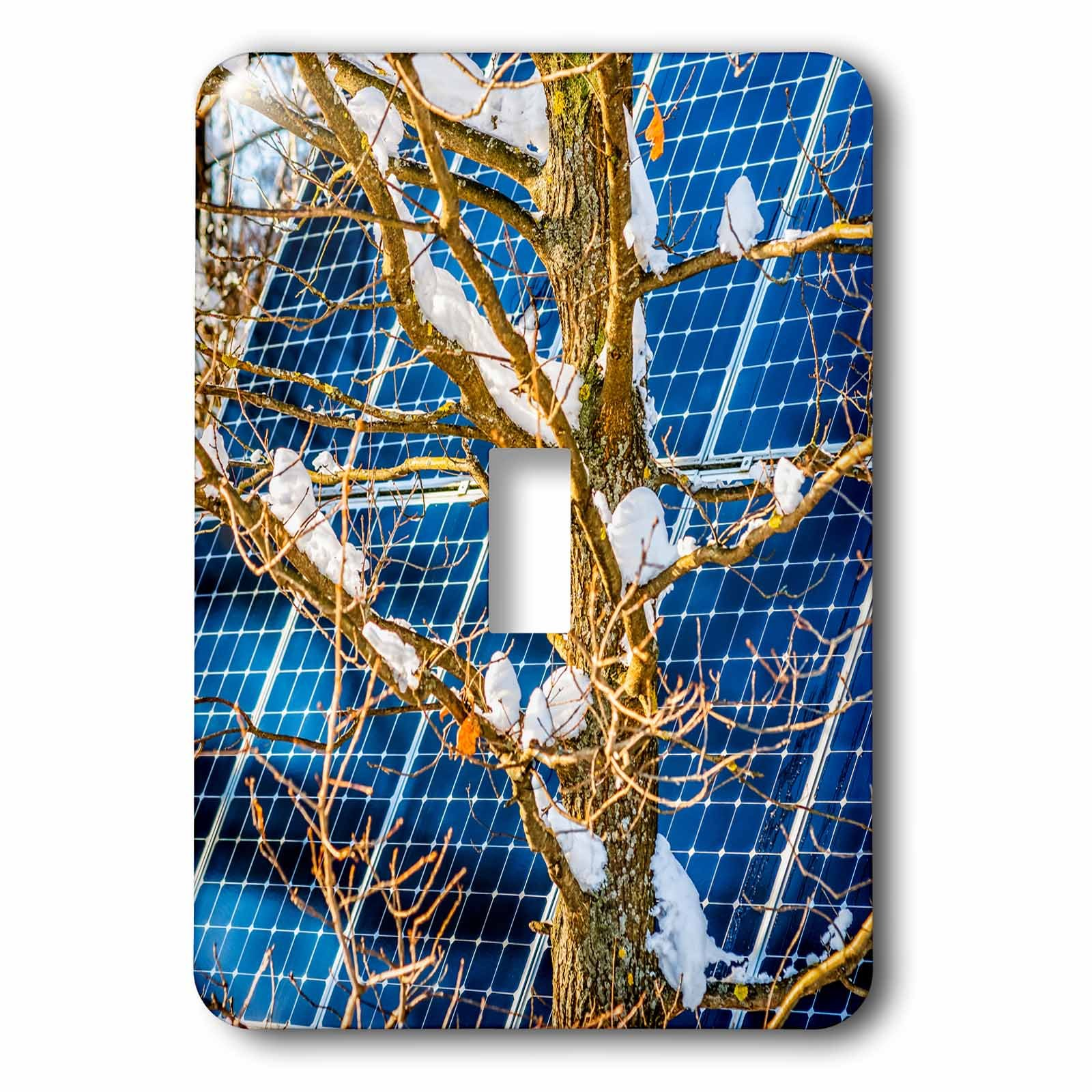 3dRose Alexis Photography - Objects - Young snow covered oak tree and a solar power panel in winter park - Light Switch Covers - single toggle switch (lsp_280889_1)