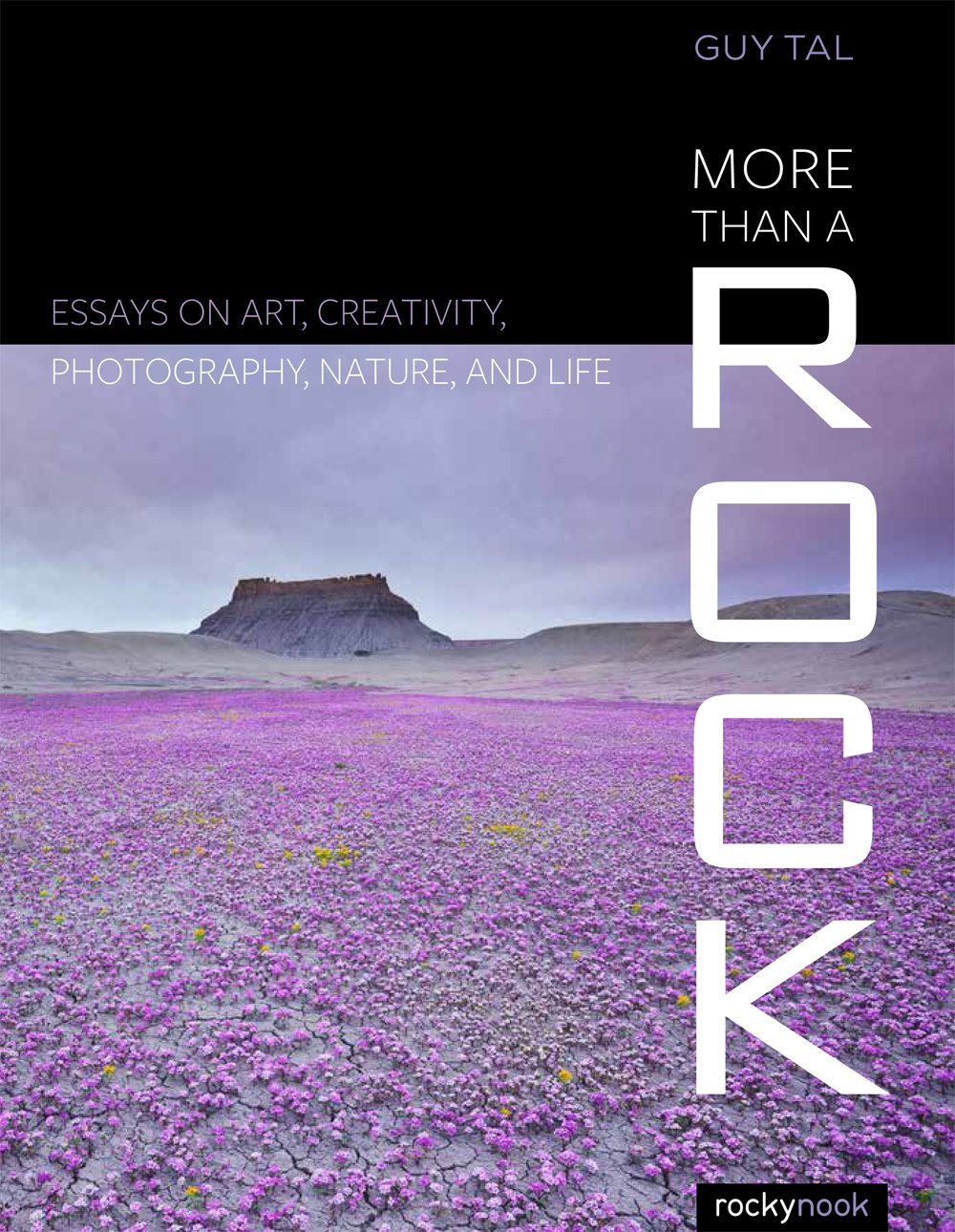 more than a rock essays on art creativity photography nature more than a rock essays on art creativity photography nature and life guy tal 9781937538828 books ca