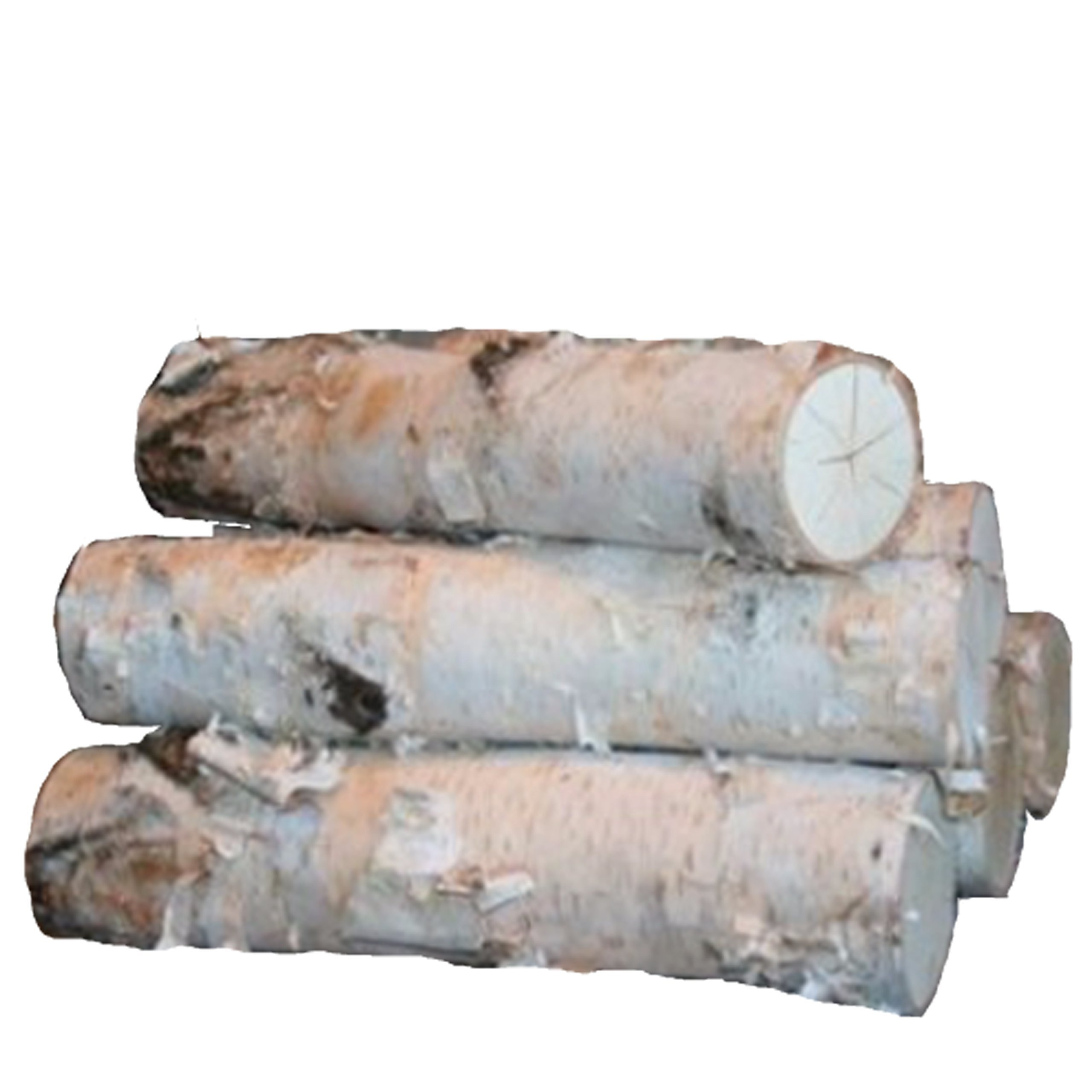 Large Birch Fireplace Log Set (5 Logs: 3''-5'' Dia. x 17-18'' long)