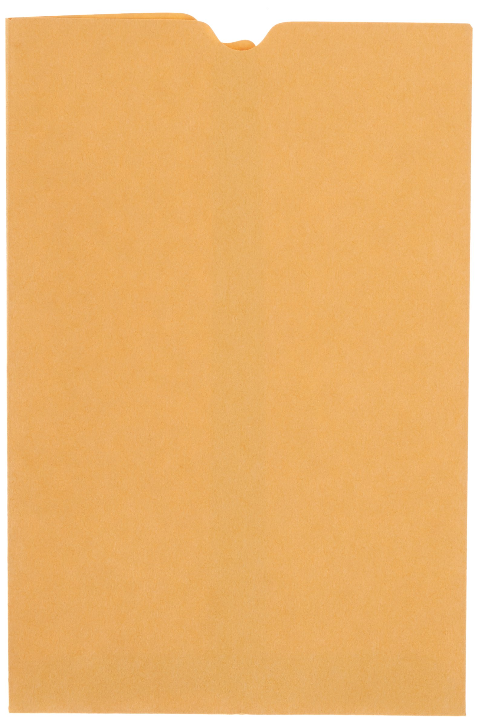 School Smart Report Card Envelope, 28 lb, 6 x 9 Inch, Kraft, Pack of 500 by School Smart
