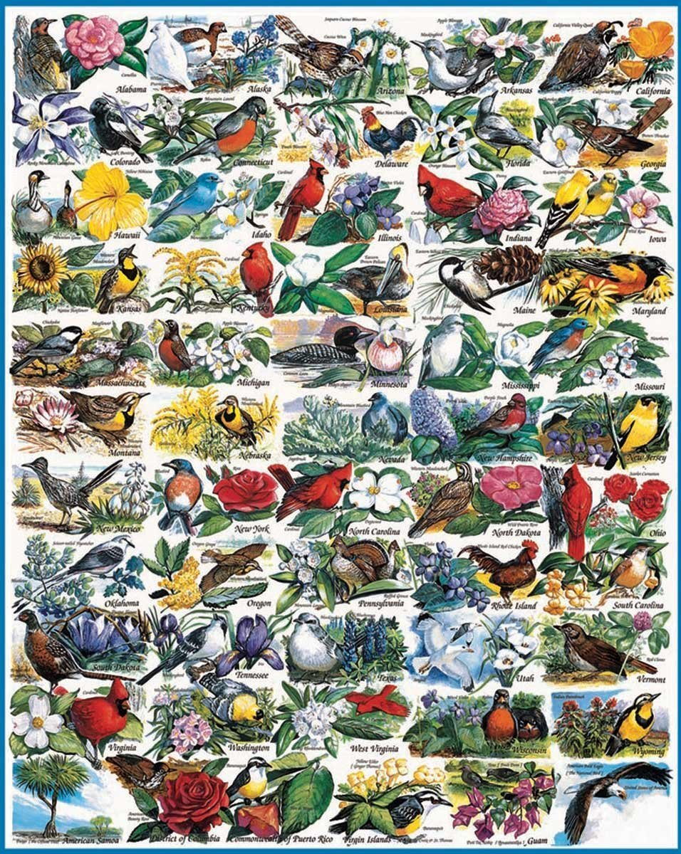 State Birds & Flowers - 1000 Pc Puzzle
