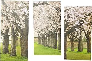 لوحة مطبوعة مع اطار من هوريزون تحاكي الزهور والنباتات - قياس 66 سم X 45 سم