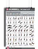 "Amazon.com : Dumbbell Workout Ii 24"" X 36"" Laminated Chart (Shoulder, Back, Leg, & Calf"