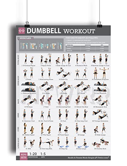 Dumbbell Exercise Workout Poster for Women - LAMINATED - Exercise For Women  - Leg, Arm, Exercises - Home Gyms - Fitness Chart - Resistance Training