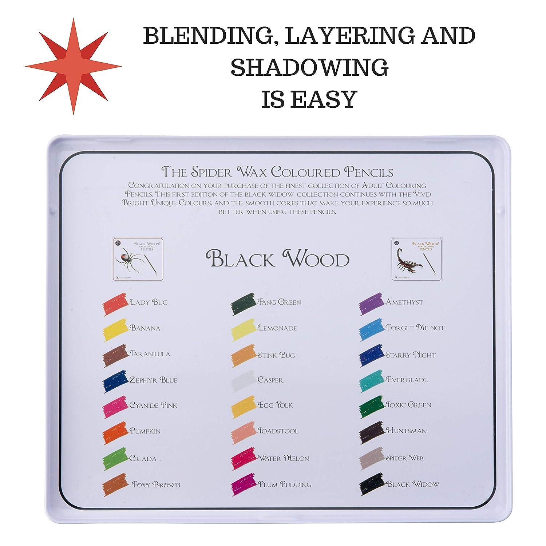 un kit di disegno Blackwood 24 pezzi disponibile per luso nei tuoi libri. il miglior set di matite di colore per i libri di colorazione adulti Black Widow /® Matite colorate per adulti