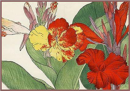 Orenco Originals Tanigami Konan Asian White Peony Flowers Counted Cross Stitch Pattern