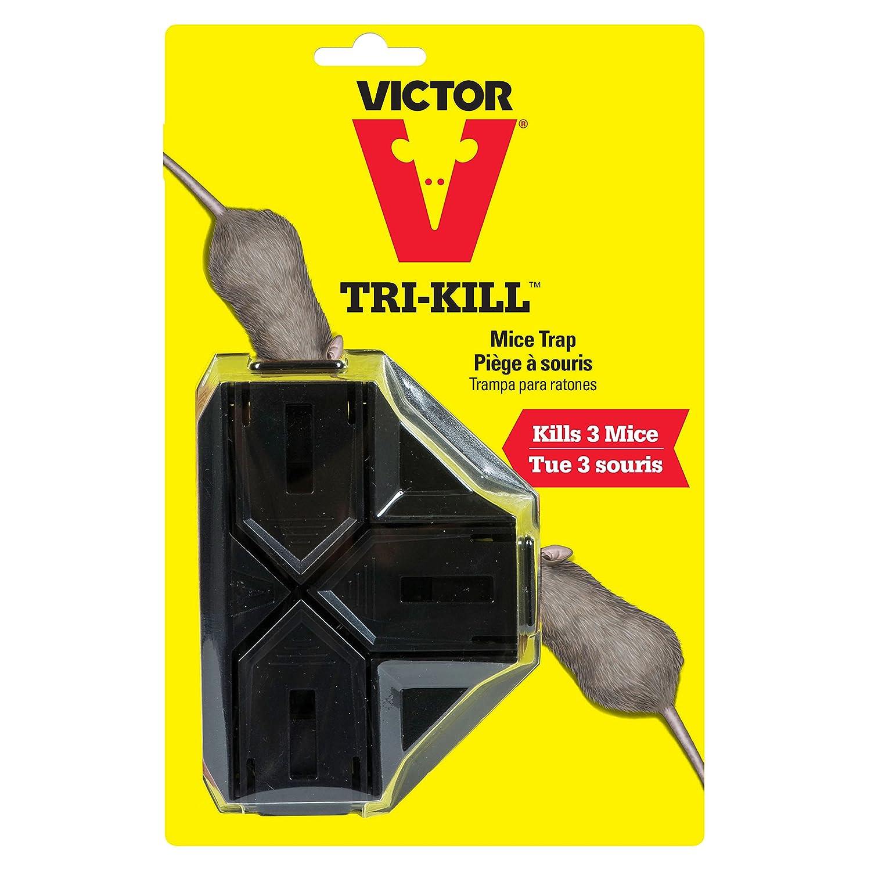 amazon com victor tri kill mouse trap 1 trap kills up to 3