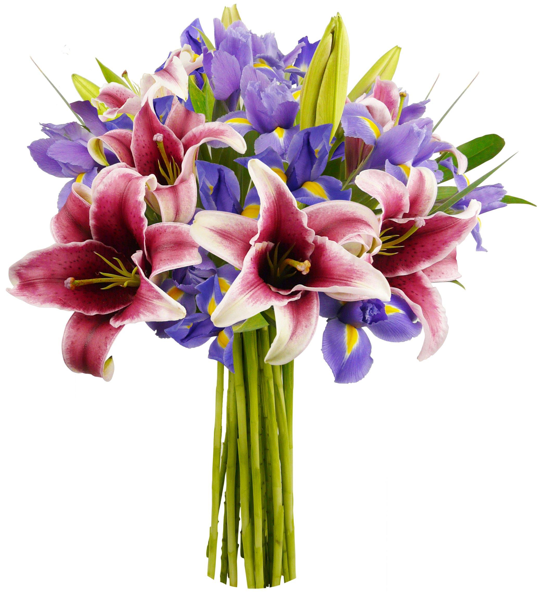 Benchmark Bouquets Stargazer Lilies And Iris No Vase