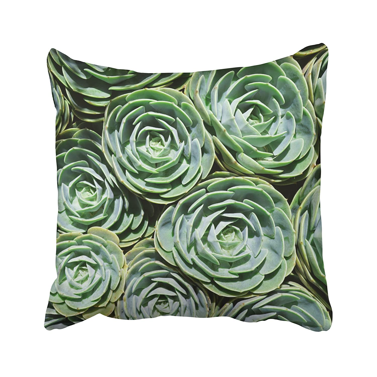 Musesh succulent plant garden botanical leaf prints green Cushions Case Throw Pillow Cover For Sofa Home Decorative Pillowslip Gift Ideas Household Pillowcase Zippered Pillow Covers 16X16Inch