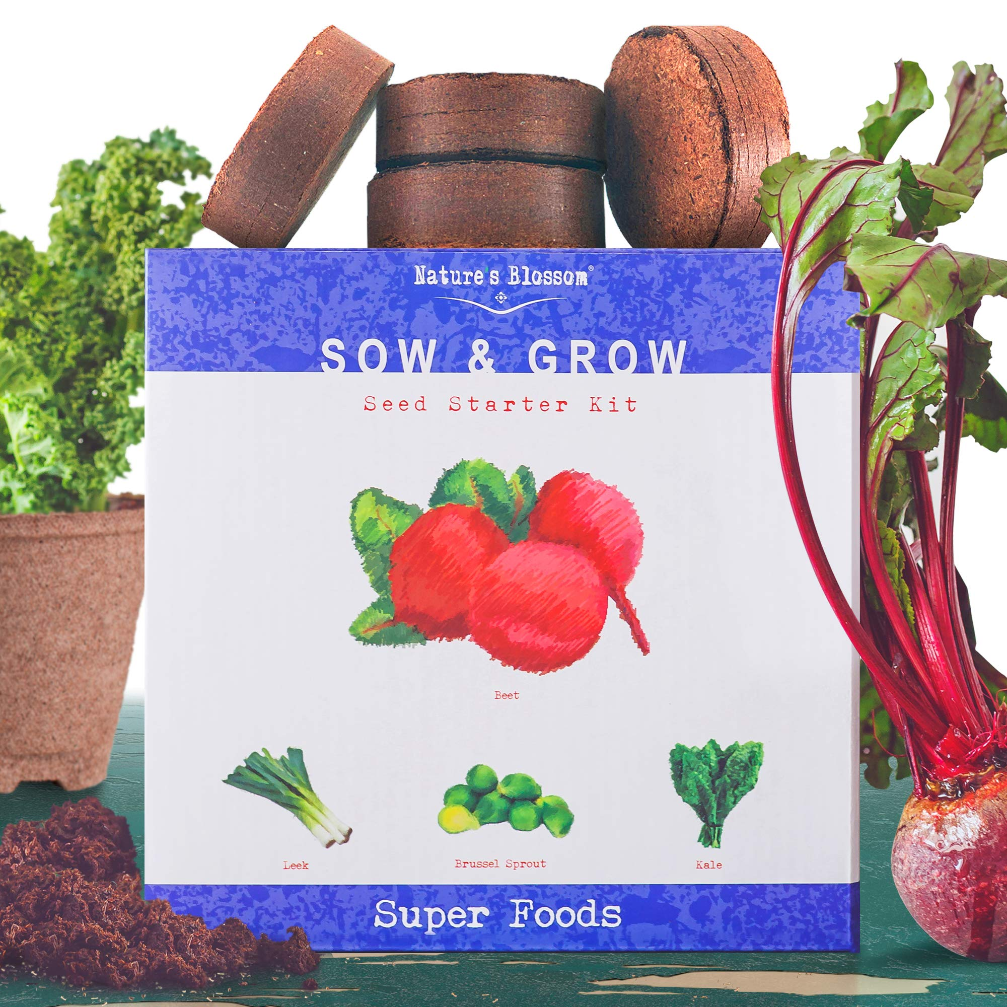 Grow 4 of The Healthiest Vegetables from Seed - Brussel Sprouts, Kale, Beets & Leeks. Superfood Sprout Kit W/Soil, Organic Planters. Outdoor Garden Gift for Beginner Gardeners, Vegans, Vegetarians
