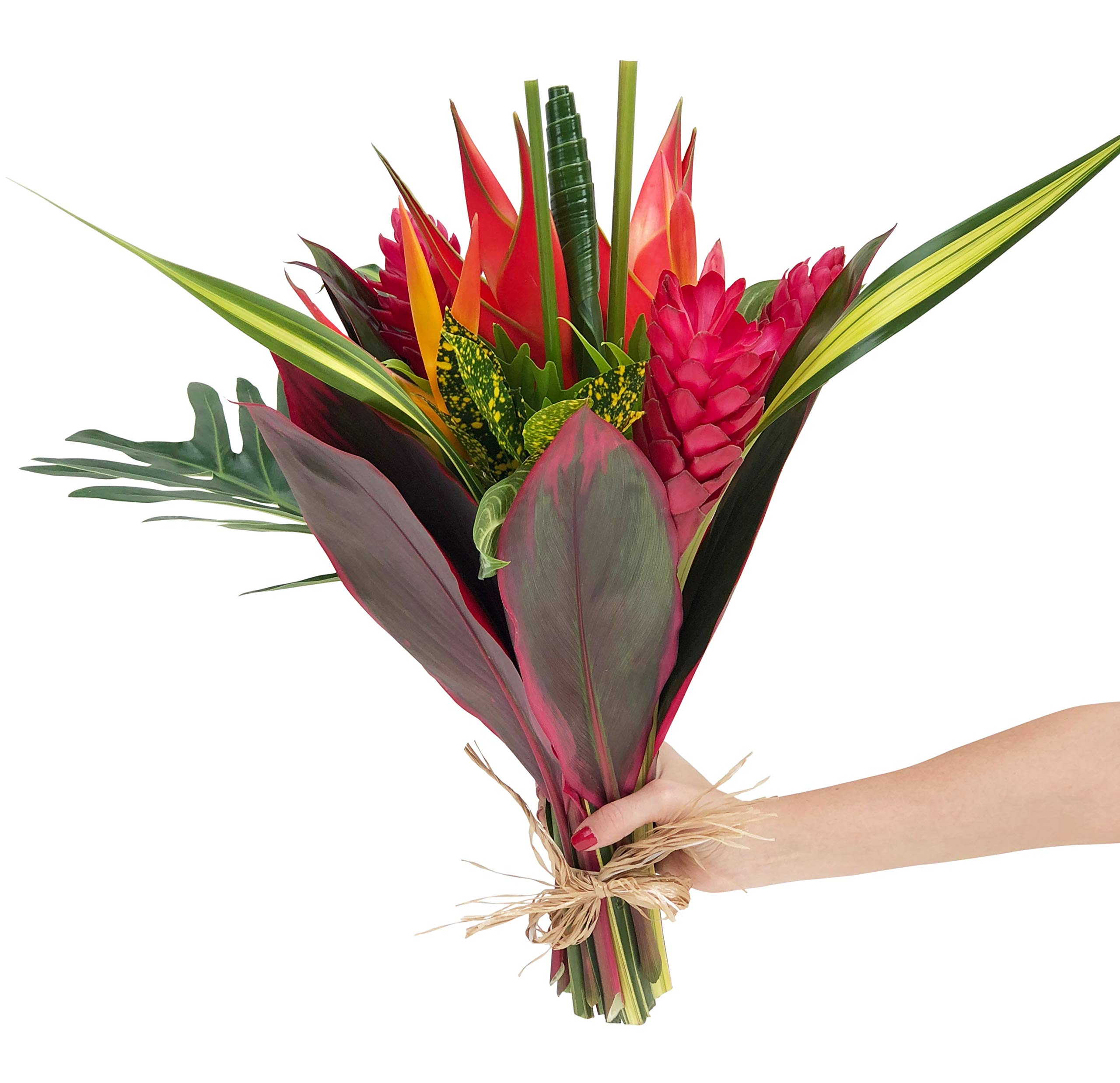 Tropical Bouquet Tropical Treasure with Bright Birds of Paradise, Pink Ginger, and Bold Tropical Greenery by BloomsyBox (Image #4)