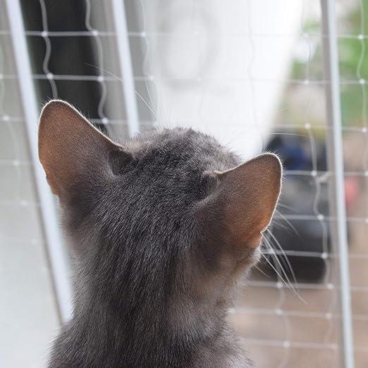 Pet Prime Red de Seguridad para Gatos para Exteriores, balcón, Escalera, Ventana, Puerta, Instrucciones de Seguridad para Mascotas, Invisibel Variaty tamaño proporcionado: Amazon.es: Productos para mascotas