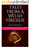 Tales from a Welsh Fireside: Seann Bhàrd's wonderful world of traditional storytelling... (Tales from The World's Firesides Book 1)