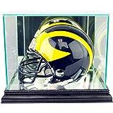 NFL Mini Football Helmet Glass Display Case