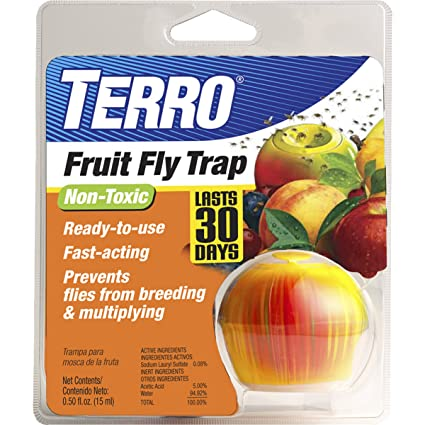 Terro Fruit fly trap to  get rid of gnats in kitchen and house