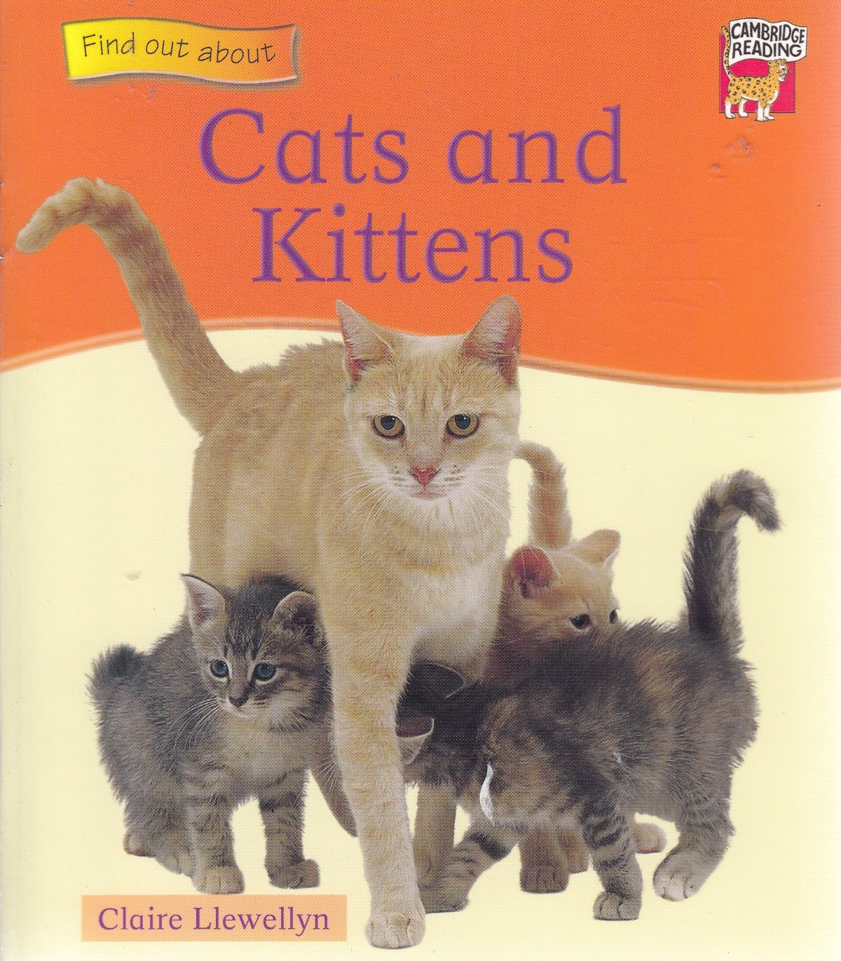 Cats and Kittens (Cambridge Reading) PDF