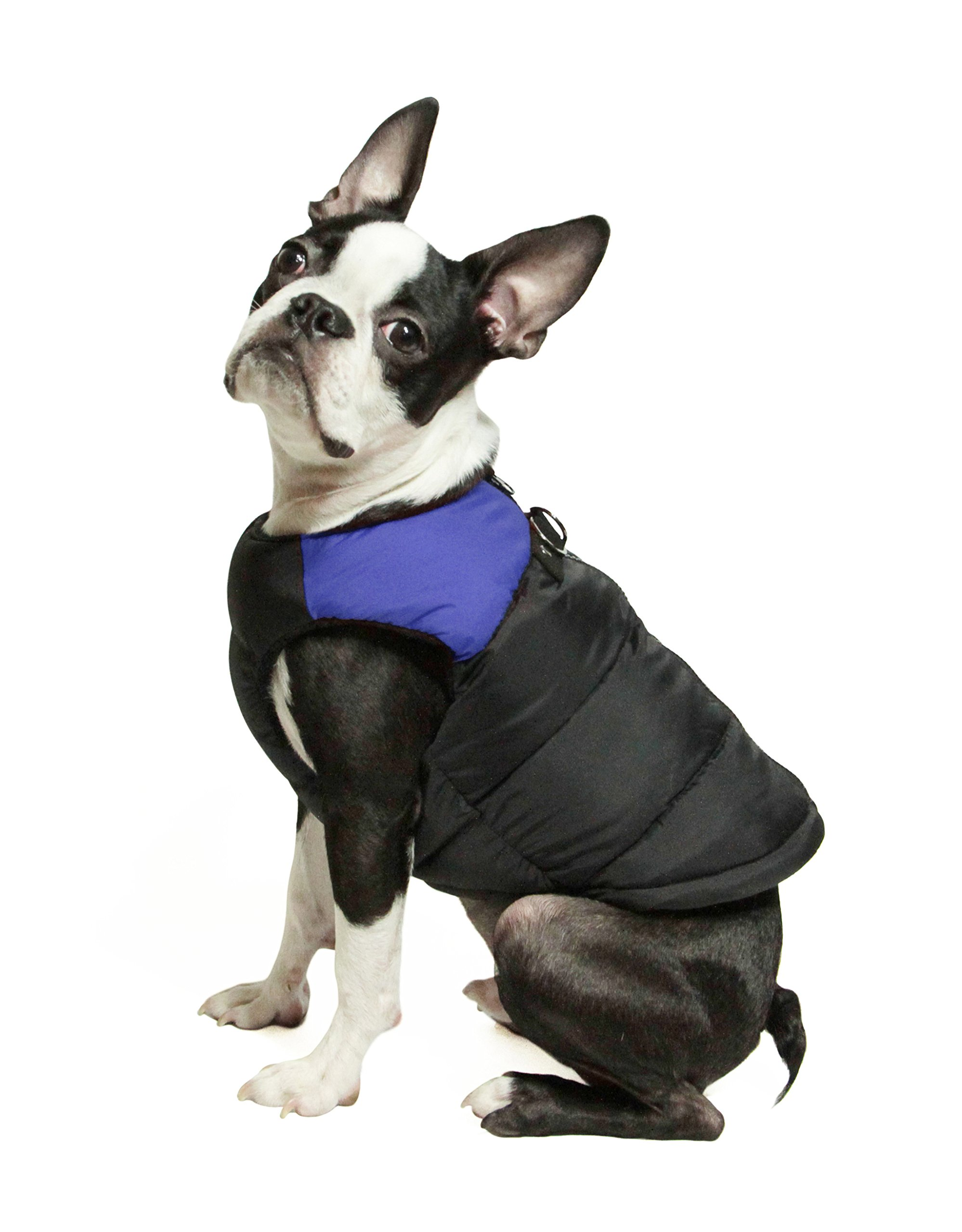 Gooby Padded Cold Weather Vest Small Dogs Safe Fur Guard Zipper Closure, Blue, Medium