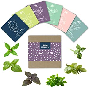 Basil Seeds for Planting - Herb Garden Seed Kit - Thai, Purple, Lime, Lemon, Spicy Globe and Sweet Italian Basil Seeds - Individual Seed Packets for Indoor, Container or Outdoor Gardening