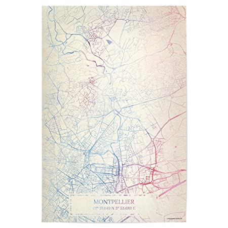 Montpellier On Map Of France.Artboxone Poster Cities Montpellier France Map Rose And Serenity I