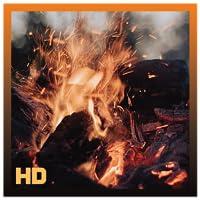 Amazing Burning Fireplace HD