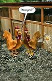 Funny reniflements Chicken Carte d'anniversaire humoristique cartes de v?ux Motif arche de Noé