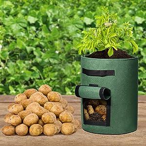 Delxo Potato SidesVelcro Window Vegetable Grow Bags