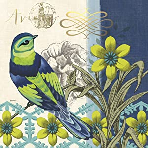 Cypress Home Alluring Aviary Songbird Paper Cocktail Napkin, 20 count