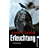 Erleuchtung: Kriminalroman (Ein Karen-Stark-und-Paul-Bremer-Krimi 8)