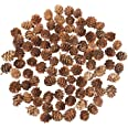 Brave Tour 400PCS Natural Mini Pine Cones, Pinecones Ornaments for DIY Crafts Lodge Pole Decorative Fall Winter Holiday Home