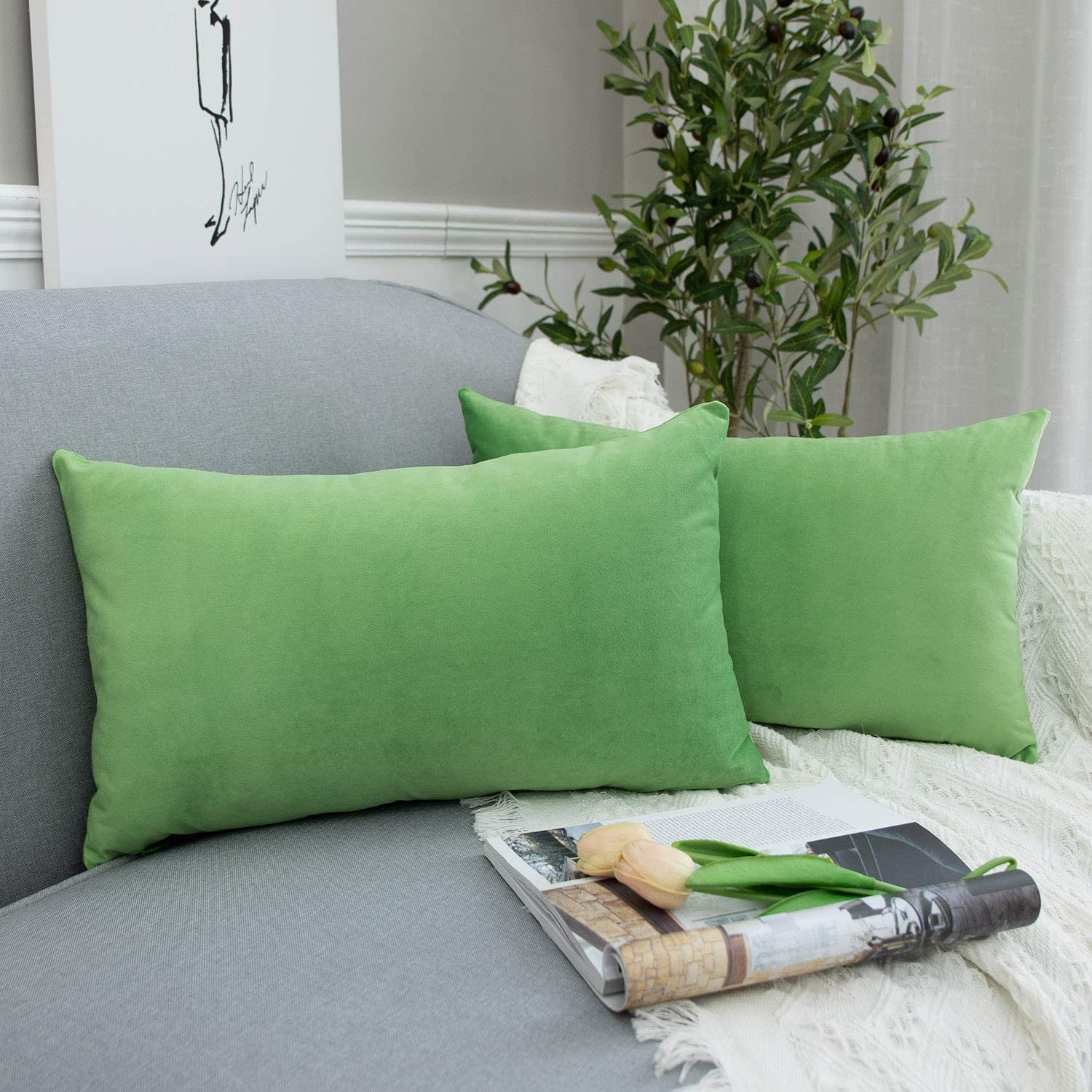 JUSPURBET Decorative Lumbar Velvet Throw Pillows Covers Cases for Couch Bed Sofa,Pack of 2 Luxury Soft Cushion Cases,12x20 Inches,Apple Green
