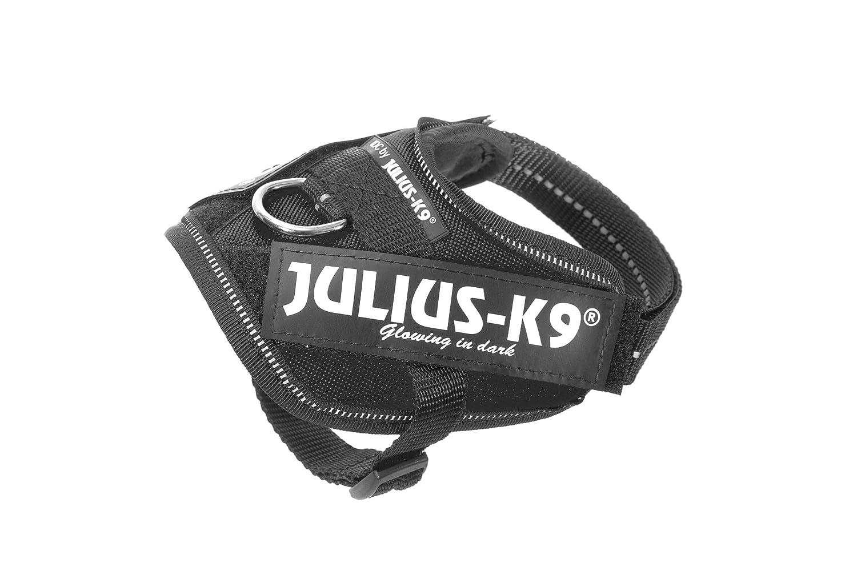 Julius-K9 16IDC-P-B2 IDC Power Harness, Tamaño Baby 2, Negro K9-Sport