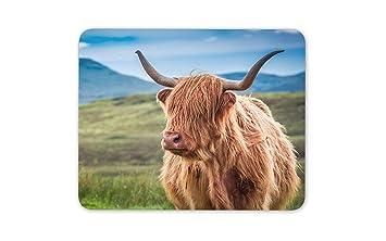 Peludo vaca de la montaña alfombrillas de ratones Cojín de ...
