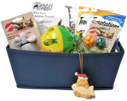 Amazoncom Cat Gift Basket With Chirping Toy Perch Catnip Mouse