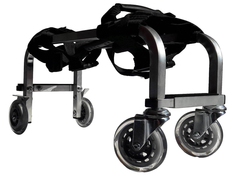 Carro Porta Camilla de Masaje para Profesionales - Estructura de aluminio de alta calidad - Liviano, duradero, sólido y de alta movilidad - 3 años de ...