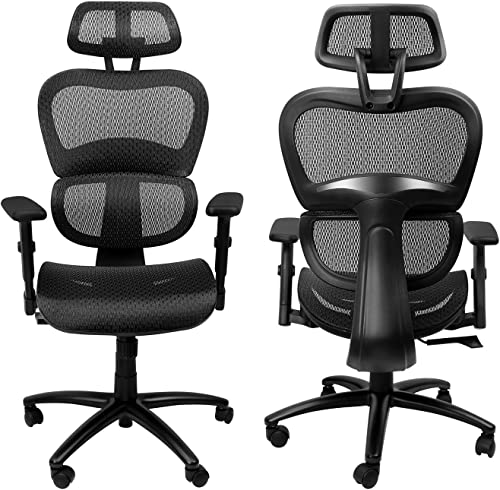 Komene Ergonomic Office Chair Lumbar Support