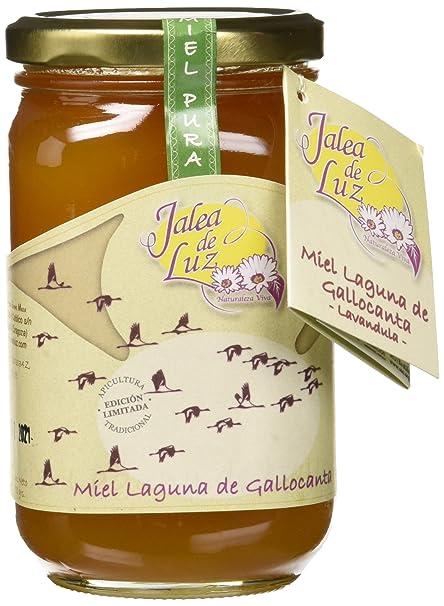 Jalea de Luz Miel Cruda Pura de Lavanda - 500 gr.