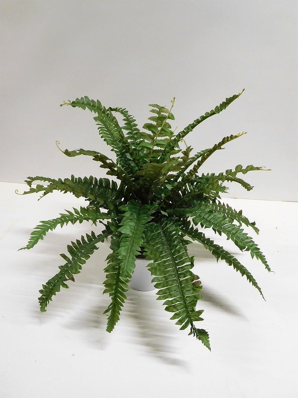 Ziegler Boston Farn Bostonfarn Grünpflanze Kunstpflanze 50 Cm Tc 82932 Getopft F71 Küche Haushalt