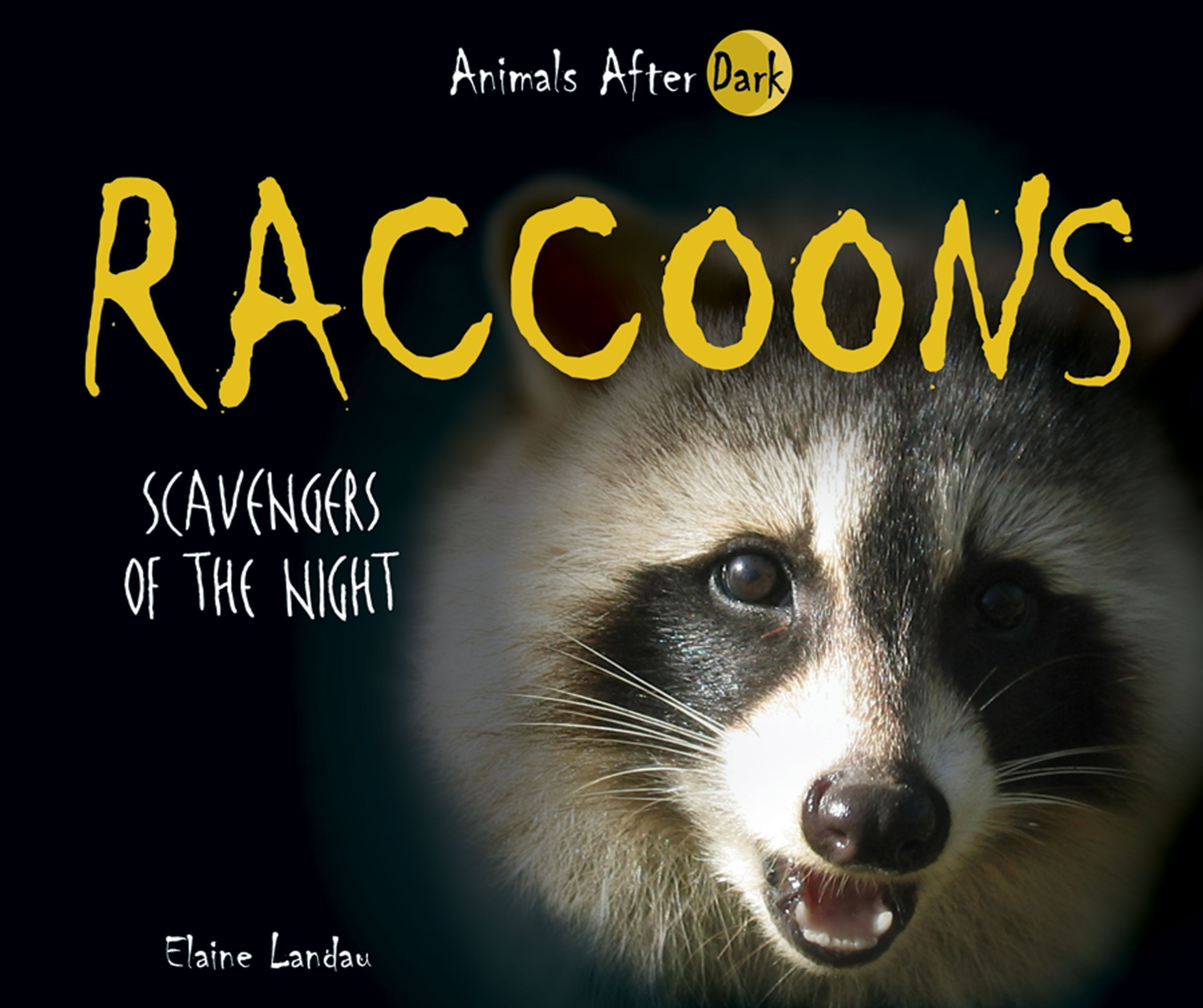 Raccoons Scavengers Of The Night Animals After Dark Elaine How To Build Nocturnal Whisker Landau 9780766027671 Books