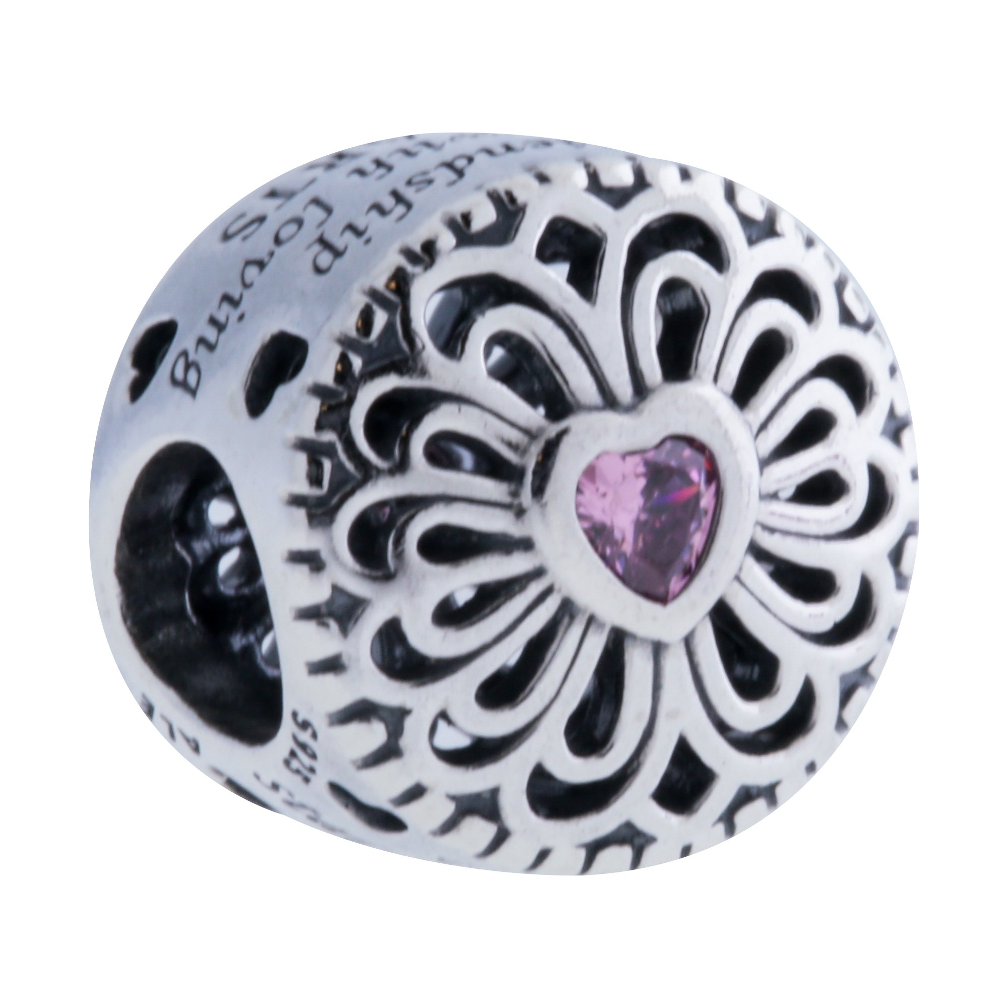 PANDORA 791955PCZ Love & Friendship Charm