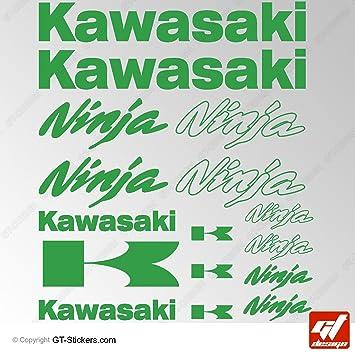 Aufkleber Kawasaki Ninja Grün Kawasaki Brett 16