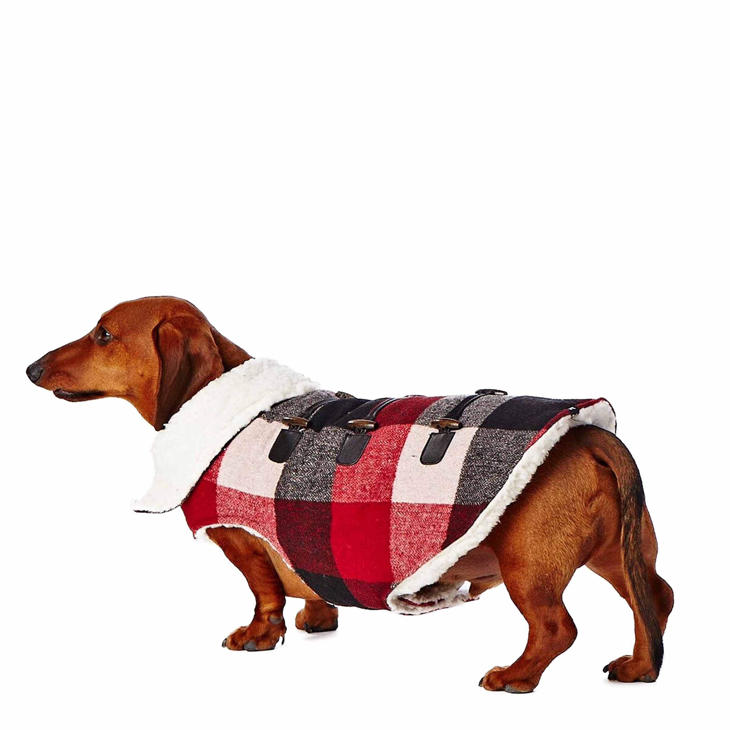 Hotel Doggy Plaid Coat with Toggles, Cranberry Red, Small