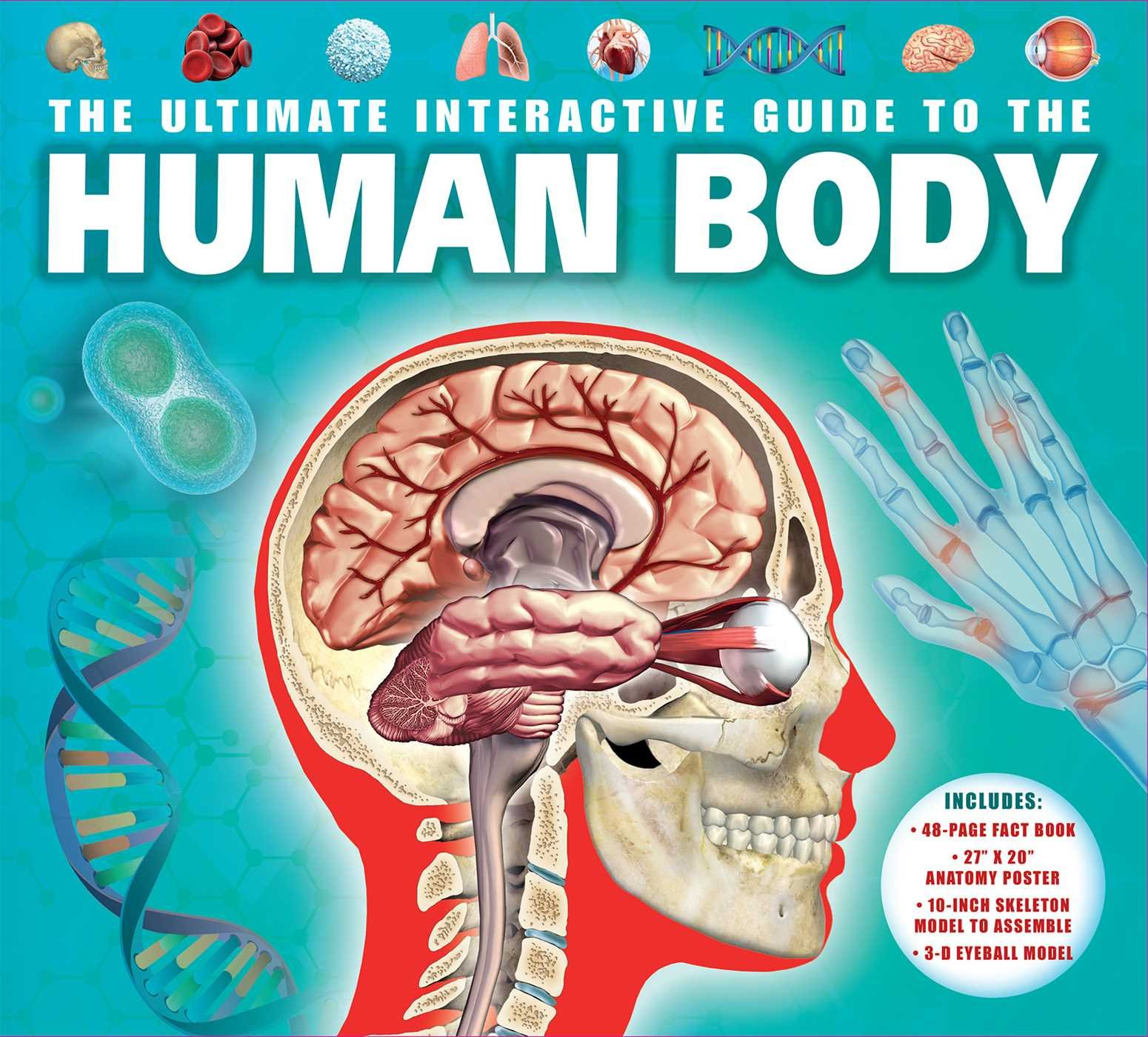 Download The Ultimate Interactive Guide to the Human Body PDF