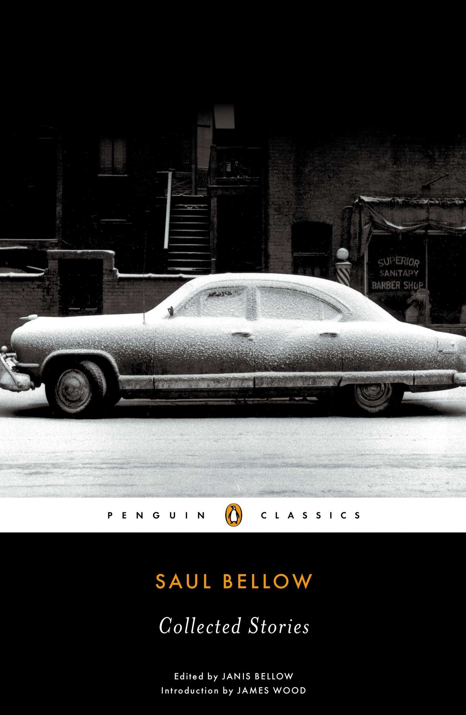 Collected Stories (Penguin Classics) pdf epub